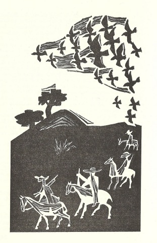Ilustração sagarana